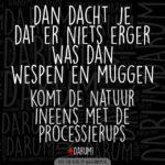 Processierups